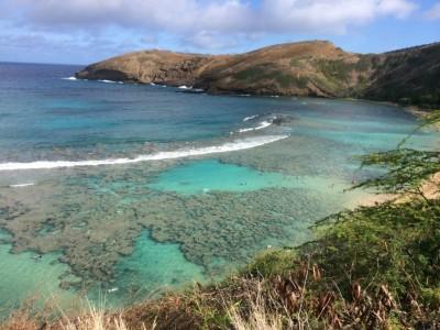 ハワイ写真3-7